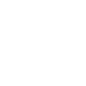 Logo representing Exascend's AES-256 technology