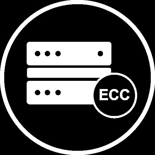 Logo representing Exascend's RAID ECC technology