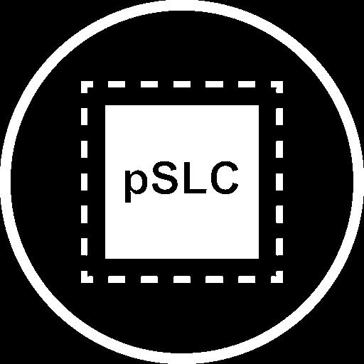 Logo representing Exascend's Pseudo SLC (pSLC) technology